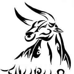 taurus977